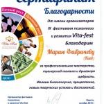 Сертификат: тренер фестиваля VITA-Fest. Одесса. 10-2014